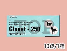 クラベット250(200mg+50mg)