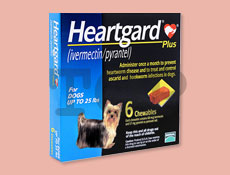 ハートガードプラス 小型犬用 11kg未満