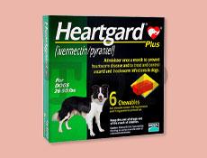 ハートガードプラス 中型犬用(11~22kg未満)