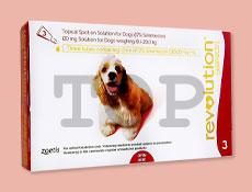 レボリューション 中型犬用10kg~20kg画像